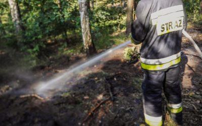 Pożar podszycia leśnego – ul. Prymasowska