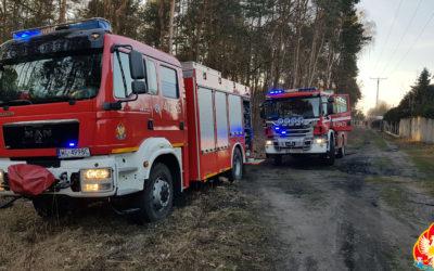 Pożar podszycia leśnego – ul. Grudzie, Legionowo