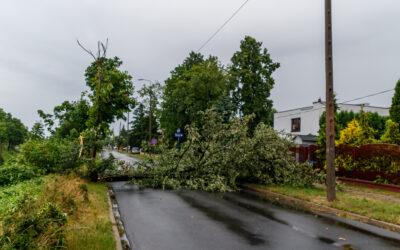 Płock – usuwanie skutków burzy
