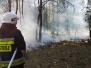 Pożar lasu - ul. Hynka